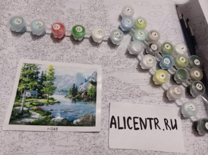 Картины по номерам на холсте недорого с Али