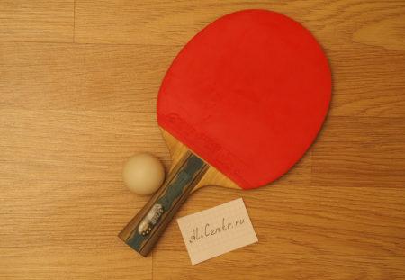 Ракетка для настольного тенниса DHS 6002